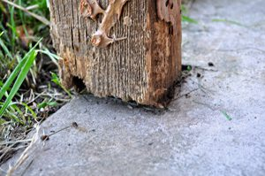 Fill That Post Hole With Concrete Porters Building Centers